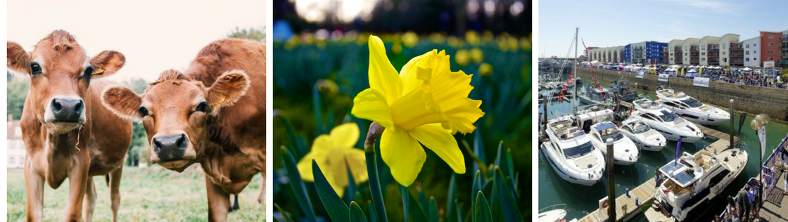 What's on in Spring?